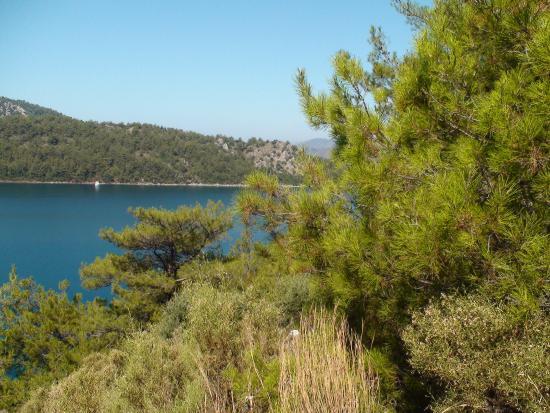 Mersoy Exclusive Aqua Resort: окрестности