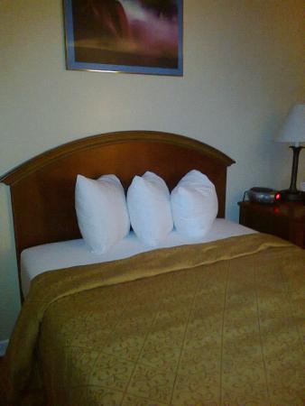 Hotel Shree Leela International: Room