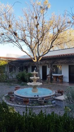 Hereford, AZ: winter courtyard