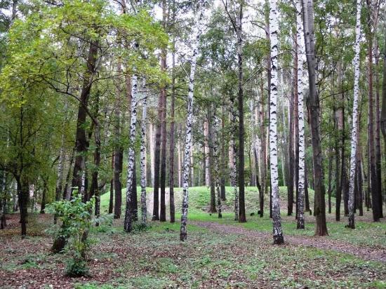 Park Kamvolny Combinat