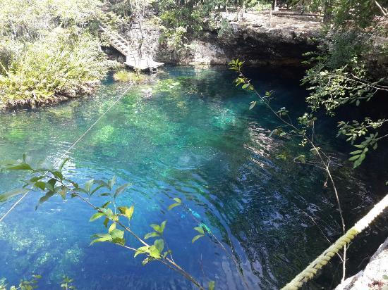 Vista del cenote 2 picture of cenote jardin del eden for Jardin eden