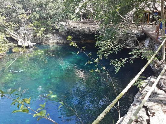 Vista del cenote 2 picture of cenote jardin del eden for Jardin del eden