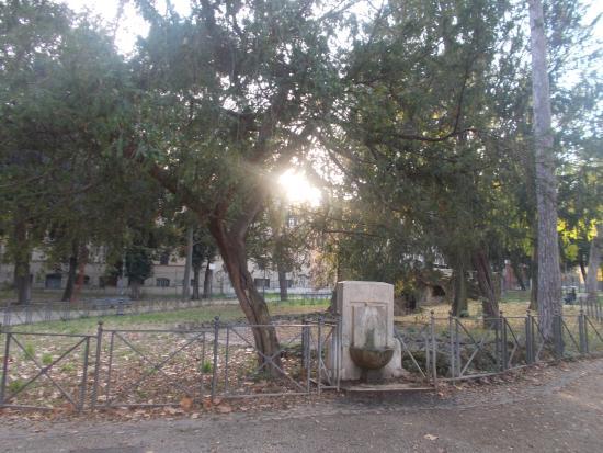 Villa Paganini Roma Tripadvisor