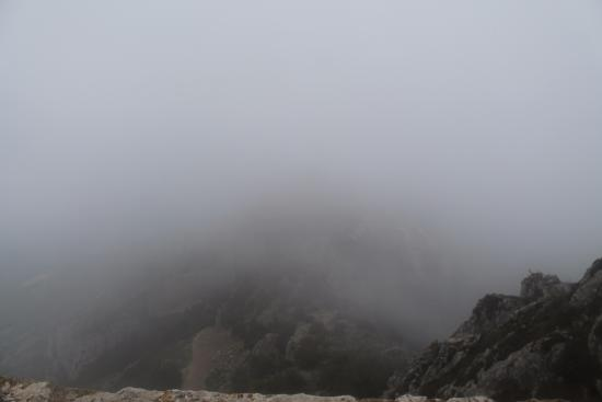 Duilhac-sous-Peyrepertuse, Frankrike: LA CIMA,POR MALA SUERTE LLEGO LA NIEBLA