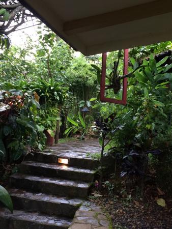 Pura Vida Hotel: photo4.jpg