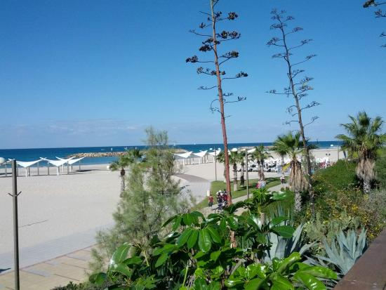 Yam 7 : The view to the beach and the sea