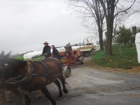 Amish Country Motel: tour men working