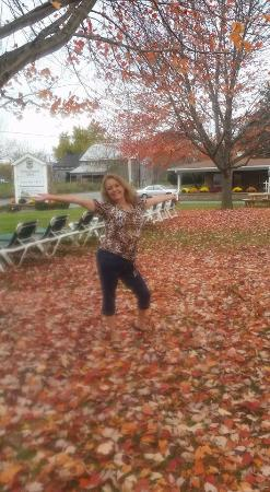 Amish Country Motel: having fun in the fall leaves out front