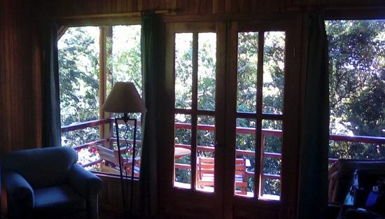 Cala Lodge: View to the forest