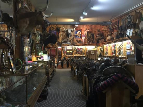 King's Saddlery and Museum: Amazing museum!
