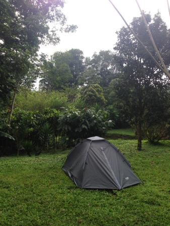 Essence Arenal Boutique Hostel Costs $5 to rent tent space! & Costs $5 to rent tent space! - Picture of Essence Arenal Boutique ...