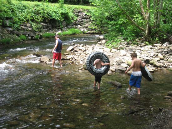 Little River Fun Picture Of Elkmont Campground