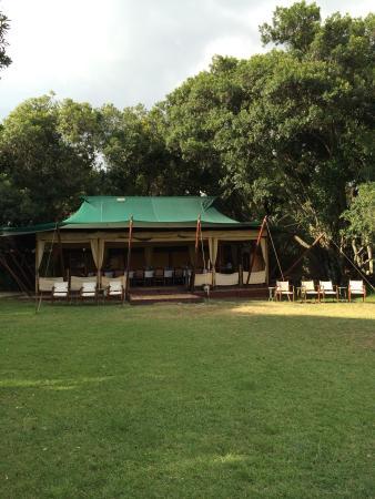 Elephant Pepper Camp: photo1.jpg