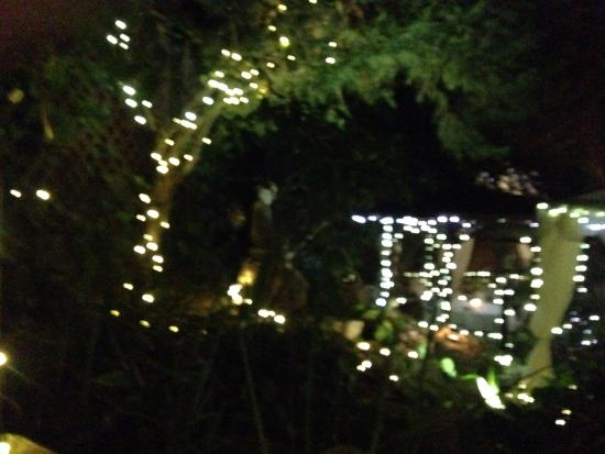 Inn of the Seventh Ray: Magical tree lights