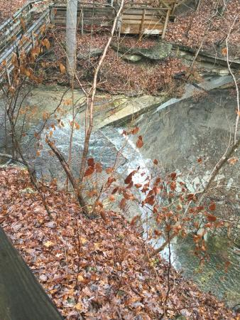 Clifty Falls State Park: Falls in winter