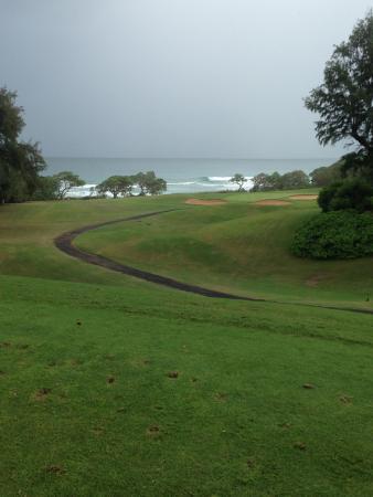 Wailua Golf Course : Don't go long!