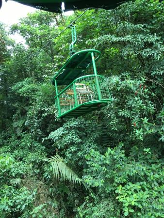Rainforest Adventures: photo0.jpg
