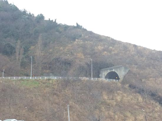 Niigata Prefecture, Japan: photo0.jpg