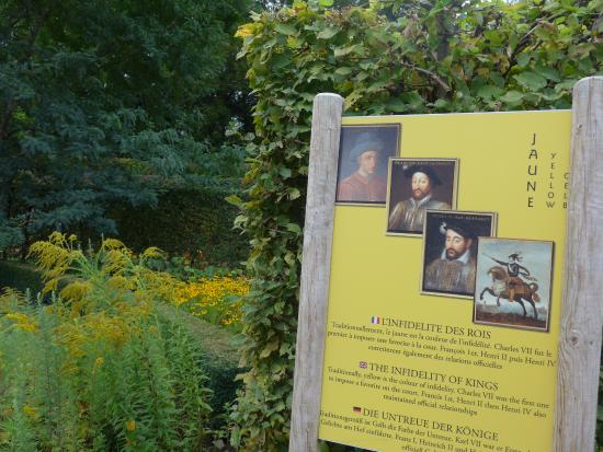 Cellettes, Francja: Yellow room in modern garden