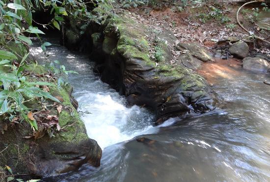 Costa Rica: agua bonita do canyon