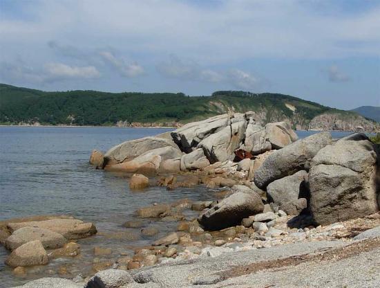 West Island : вид