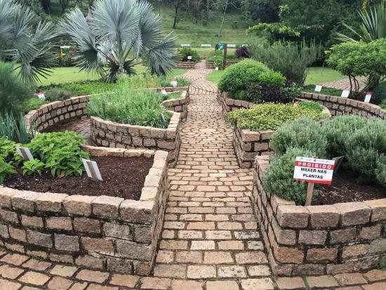 photo9jpg  Foto di Jardim Botanico, Jundiai  TripAdvisor