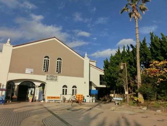 Cape Inubozaki: 犬吠埼に行く犬吠駅です。