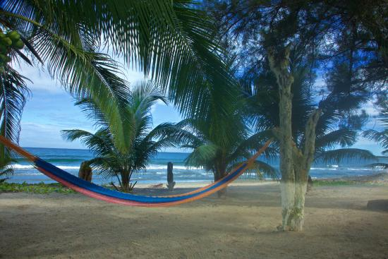 Caribbean Coral Inn: In front of the hotel you can rest