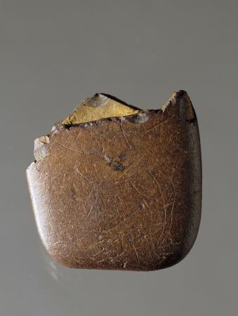 Museo Civico Archeologico B. Greco: ciottolo preistorico