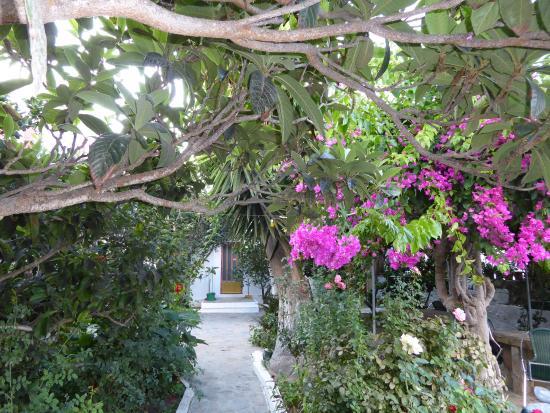 Anna Studios Amorgos: towards the entrance