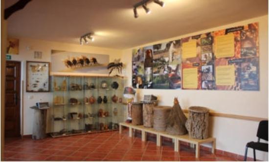 Poyales del Hoyo, สเปน: Aula museo
