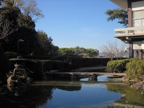Giudicate voi foto di giardino giapponese roma - Piccolo giardino giapponese ...