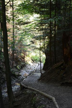 Szopczanski Gorge in Sromowce Nizne