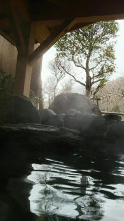Yasumiishi Onsen Otaya: 2015121314100600_large.jpg