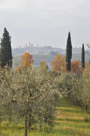 Agriturismo Il Vecchio Maneggio: Vista dal maneggio di San Gimignano