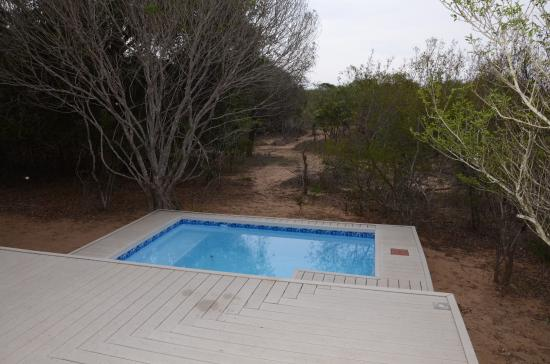 Bushwillow Collection: Private pool