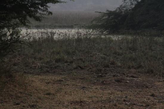 Nawabganj Wildlife Sanctuary