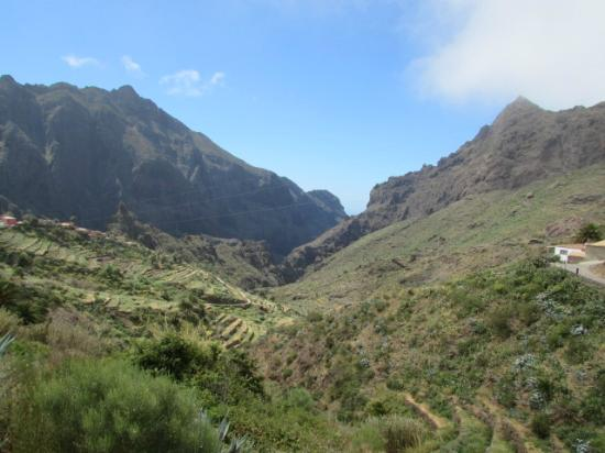 Masca 2 - Picture of Masca Valley, Tenerife - TripAdvisor