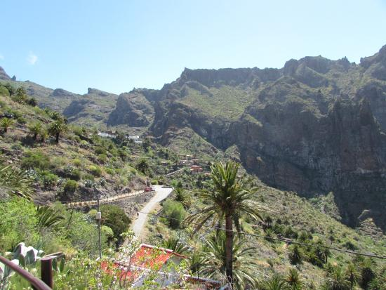 20151219_122415_large.jpg - Picture of Masca Valley, Tenerife - TripAdvisor