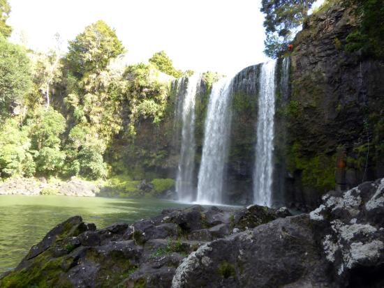 วานกาไร, นิวซีแลนด์: Whangarei Falls