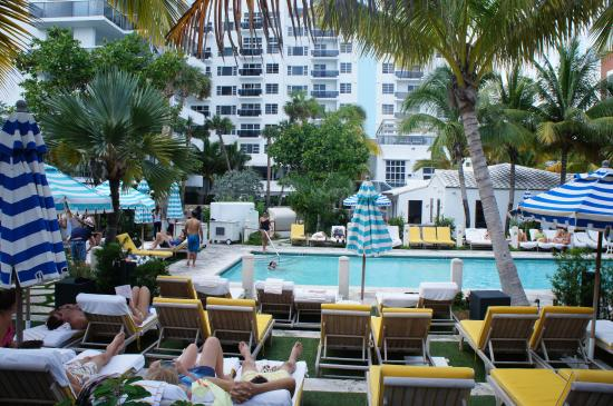 Piscina E Cadeiras Picture Of The Confidante Miami Beach