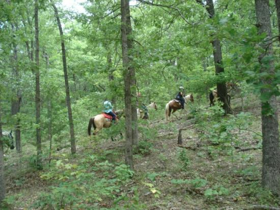 Old Family Farm Trail Rides: getlstd_property_photo