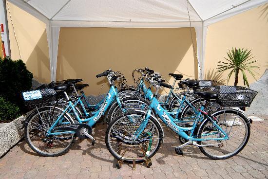 Hotel Delle Mimose: Biciclette mountain bike