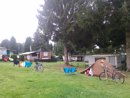 Camping BelleVue Waimes Belgique  Voir Les Tarifs Et Avis