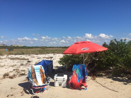 Honeymoon Island State Park Private Beach Stake Your Claim