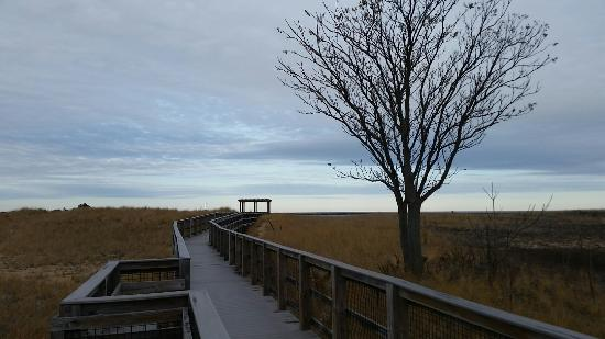 Plum Island, MA: Even in the Fall, it's gorgeous here.