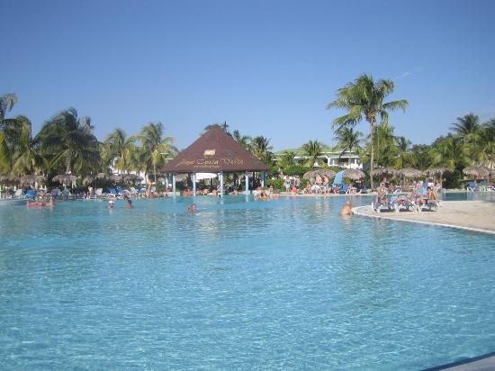 Piscine et bar picture of hotel playa costa verde for Club piscine montreal locations