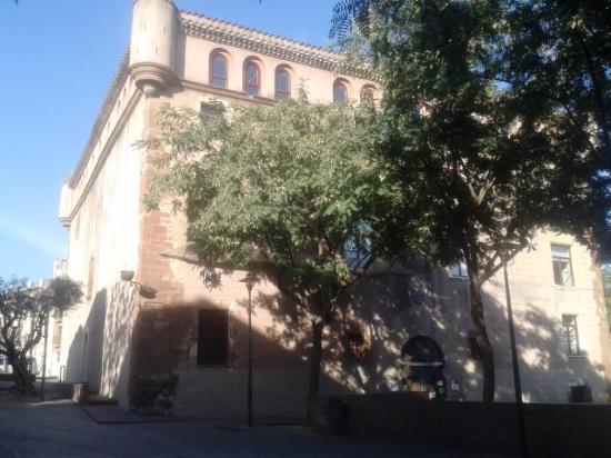 Castillo de Palleja: Vista exterior