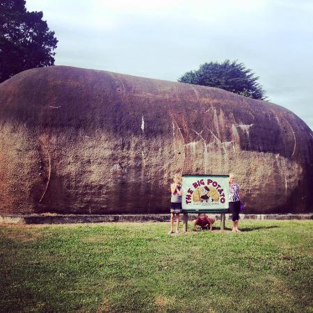 The Big Potato: The big ... err ... potato