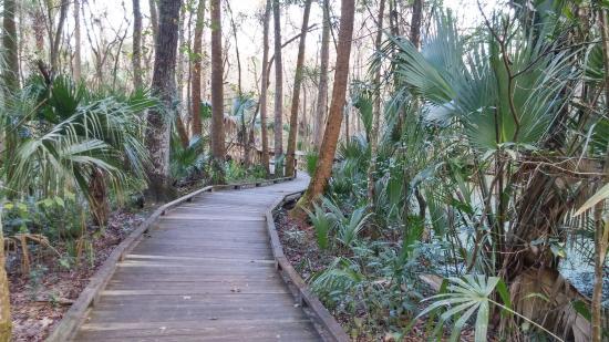 Sebring, FL: Beautiful park